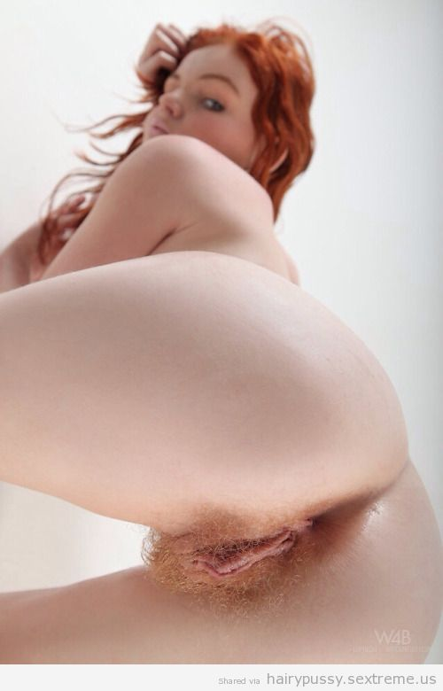 Hairy Pussy Pic